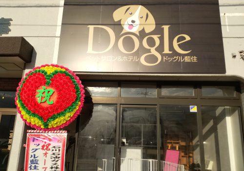徳島県藍住町の犬の美容室 ドッグル藍住 外観